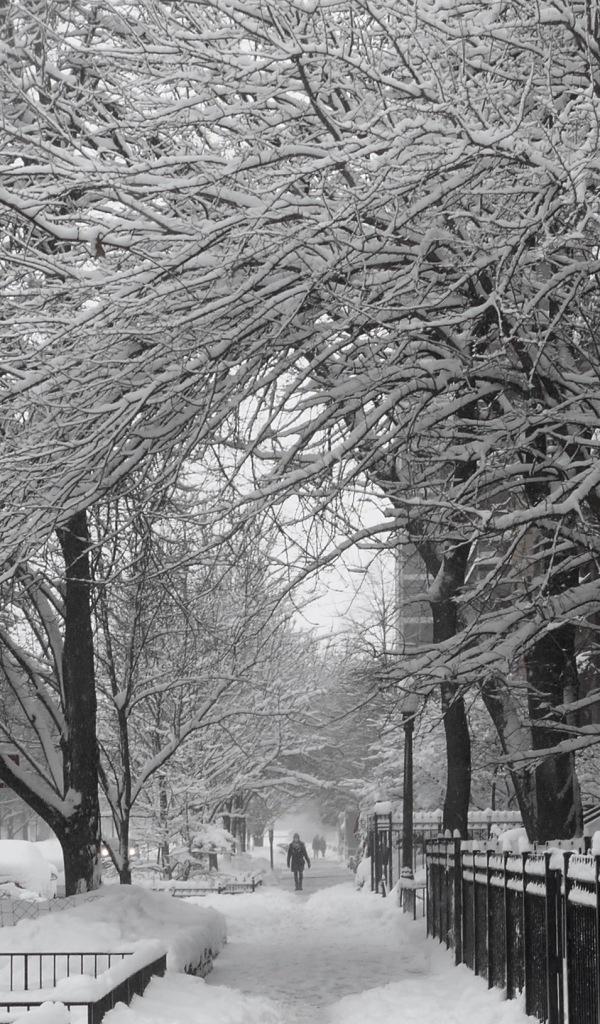 Snow Sidewalk in Gold Coast Chicago